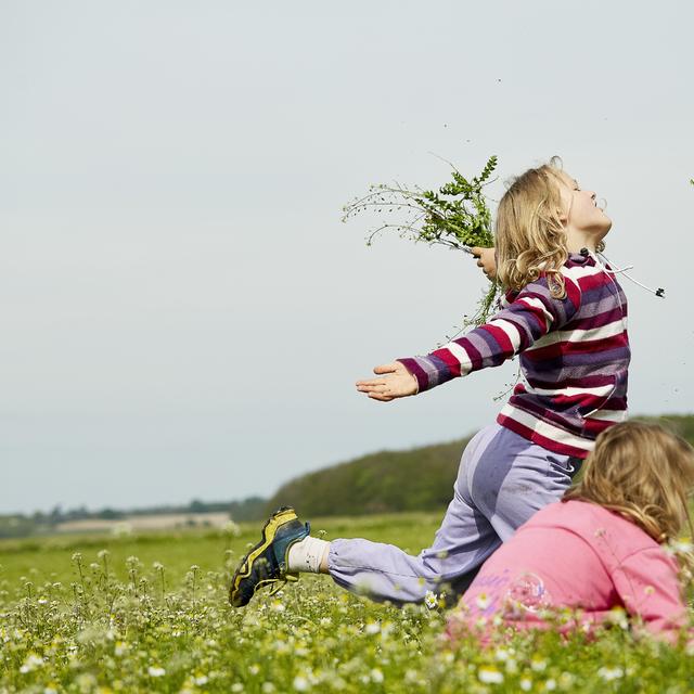 Heřmánek dětem prospívá