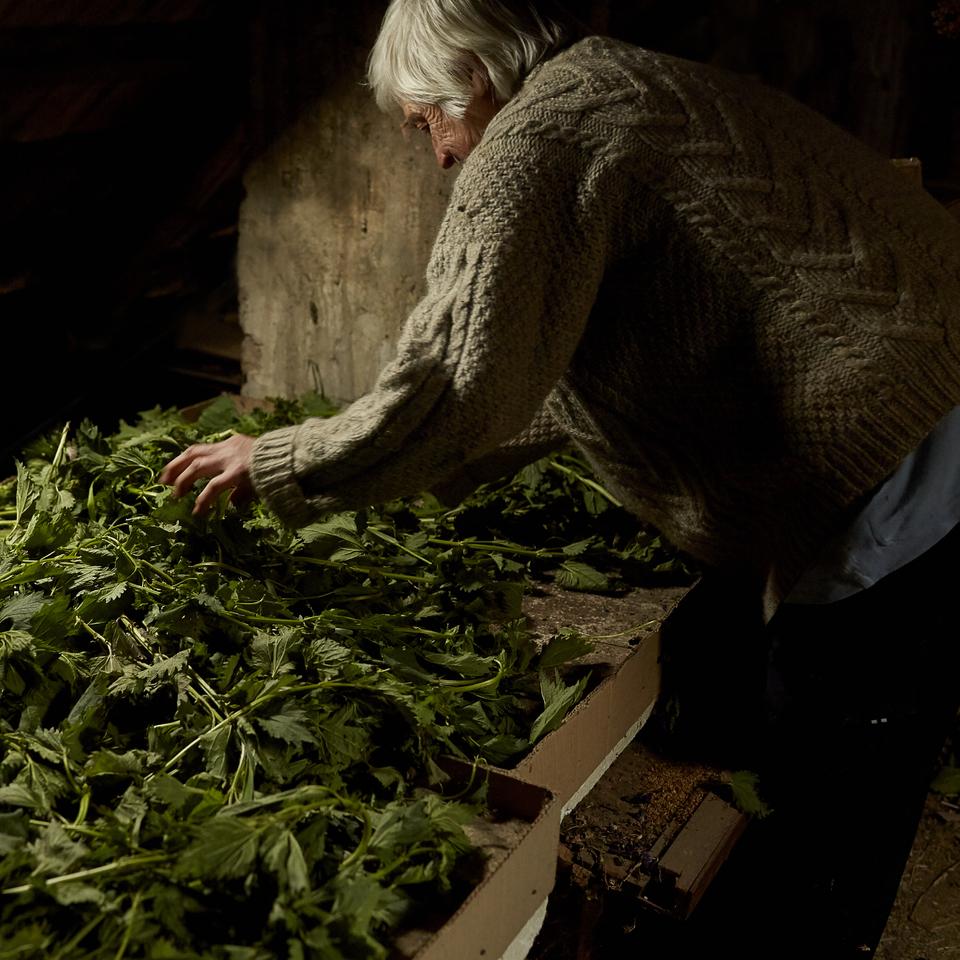 Paní Boudová suší bylinky