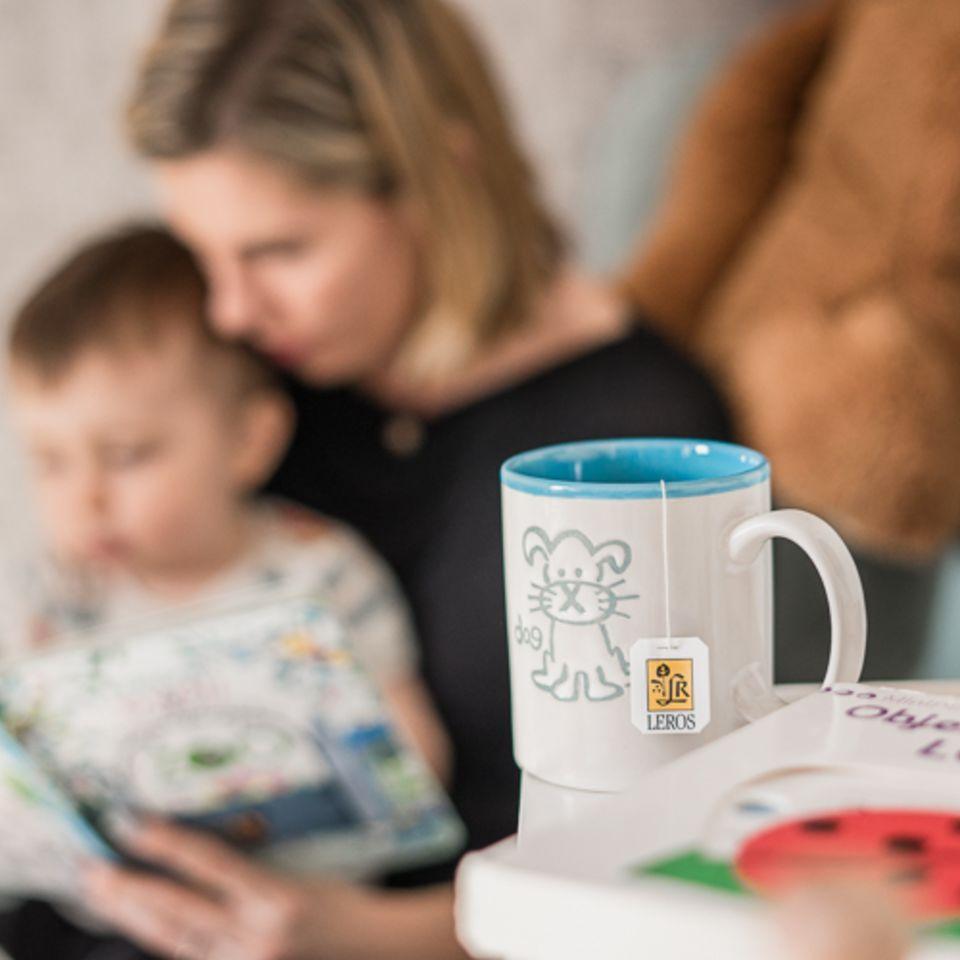 Čaj z najkvalitnejších byliniek a plodov z kontrolovaného ekologického poľnohospodárstva určený ako lahodný nápoj nielen deťom, ale aj všetkým, ktorí ocenia prvotriednu chuť a kvalitu.