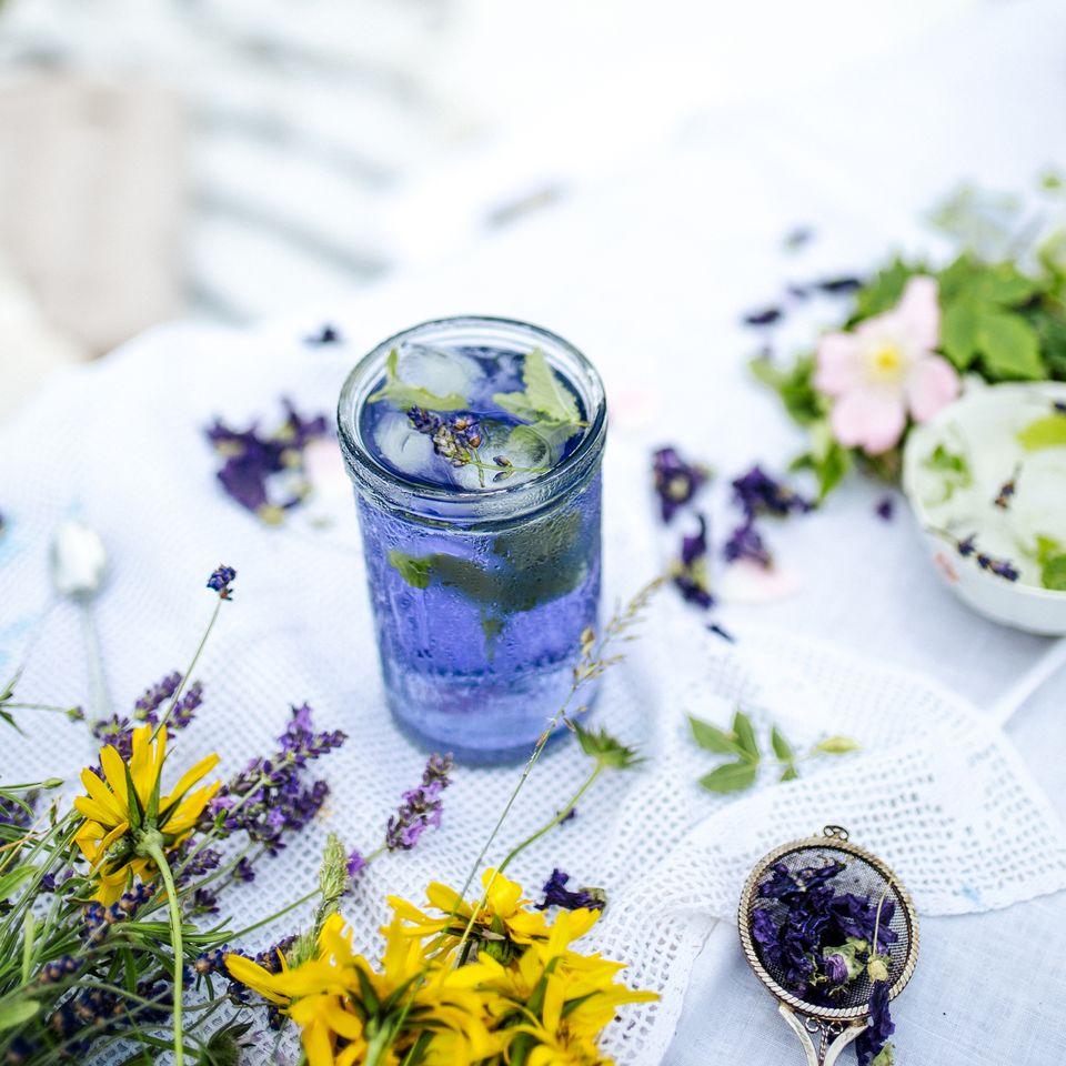 Bylinná směs slevandulí a meduňkou vytvořená speciálně pro přípravu osvěžujícího ledového nápoje.