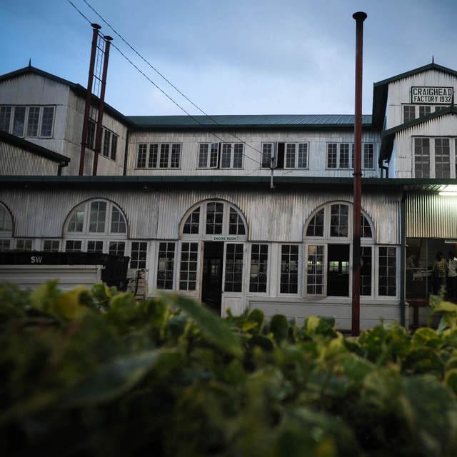 Dilmah Tea Estate - Craighead