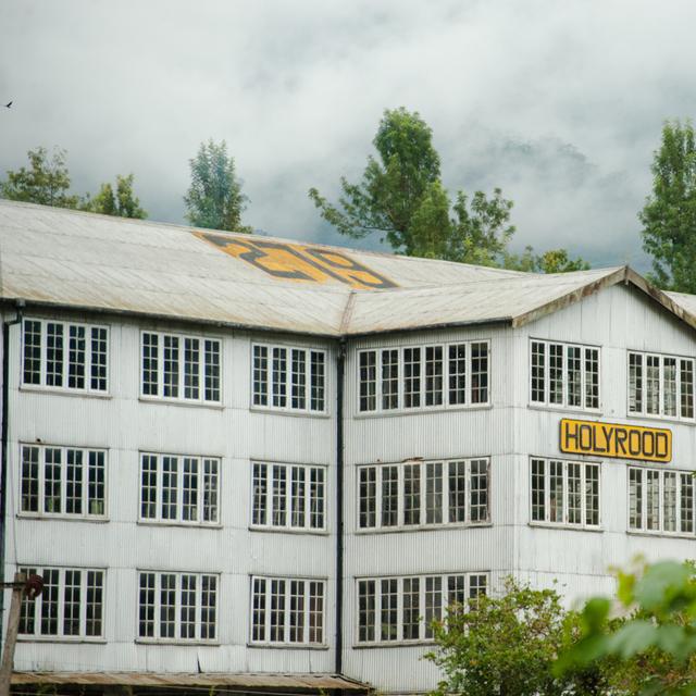 Dilmah Tea Estate - Holyrood